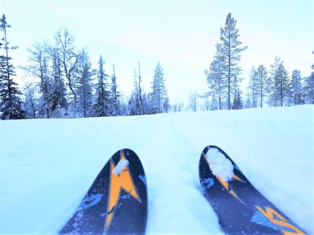skidor